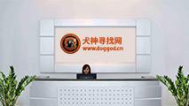 犬神信阳子公司成立